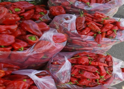 Wholesale Capia Pepper
